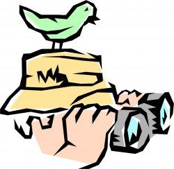 birdwatching_birdwatching.250px