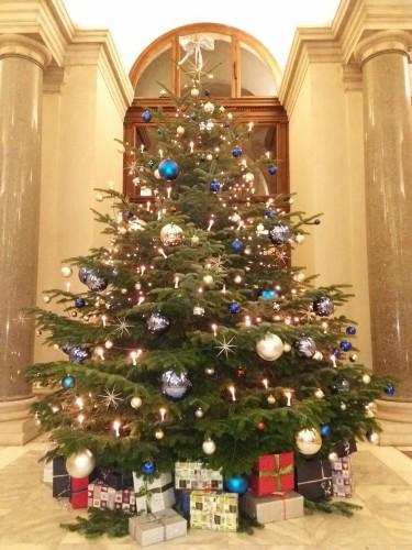 Wien Weihnachtsbaum Kaufen.Traditionelle Weihnachtssymbole Der Weihnachtsbaum Deutschkurs